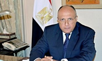 Egypt FM Shoukry discusses Palestine issue with Norway's peace envoy