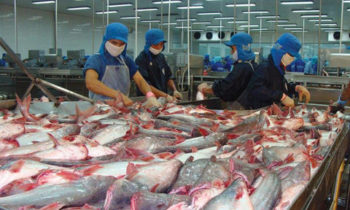 Viet Nam, Norway confer on aquaculture