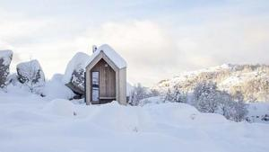 COME IN: THE SELF-MAINTAINING WOOD CABIN