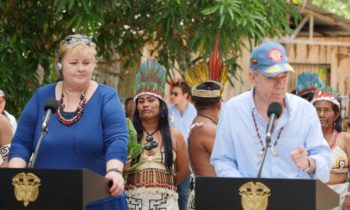 Norway steps up the fight against illegal deforestation with UN and INTERPOL