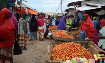 Norfund's $10m to support Somali small businesses