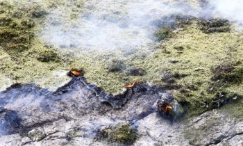 Sweden and Norway 'concerned' by unusual pre-season forest fires