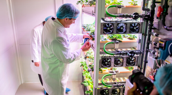 Tungsram opens one-of-a-kind vertical farm in Budapest for research purposes